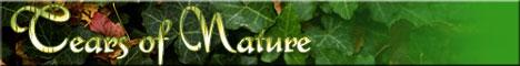 Слезы Природы    http://www.tears-nature.narod.ru